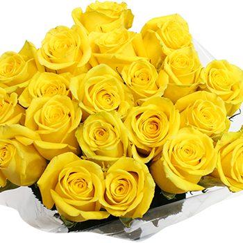 55836-20-stem-roses-yellow